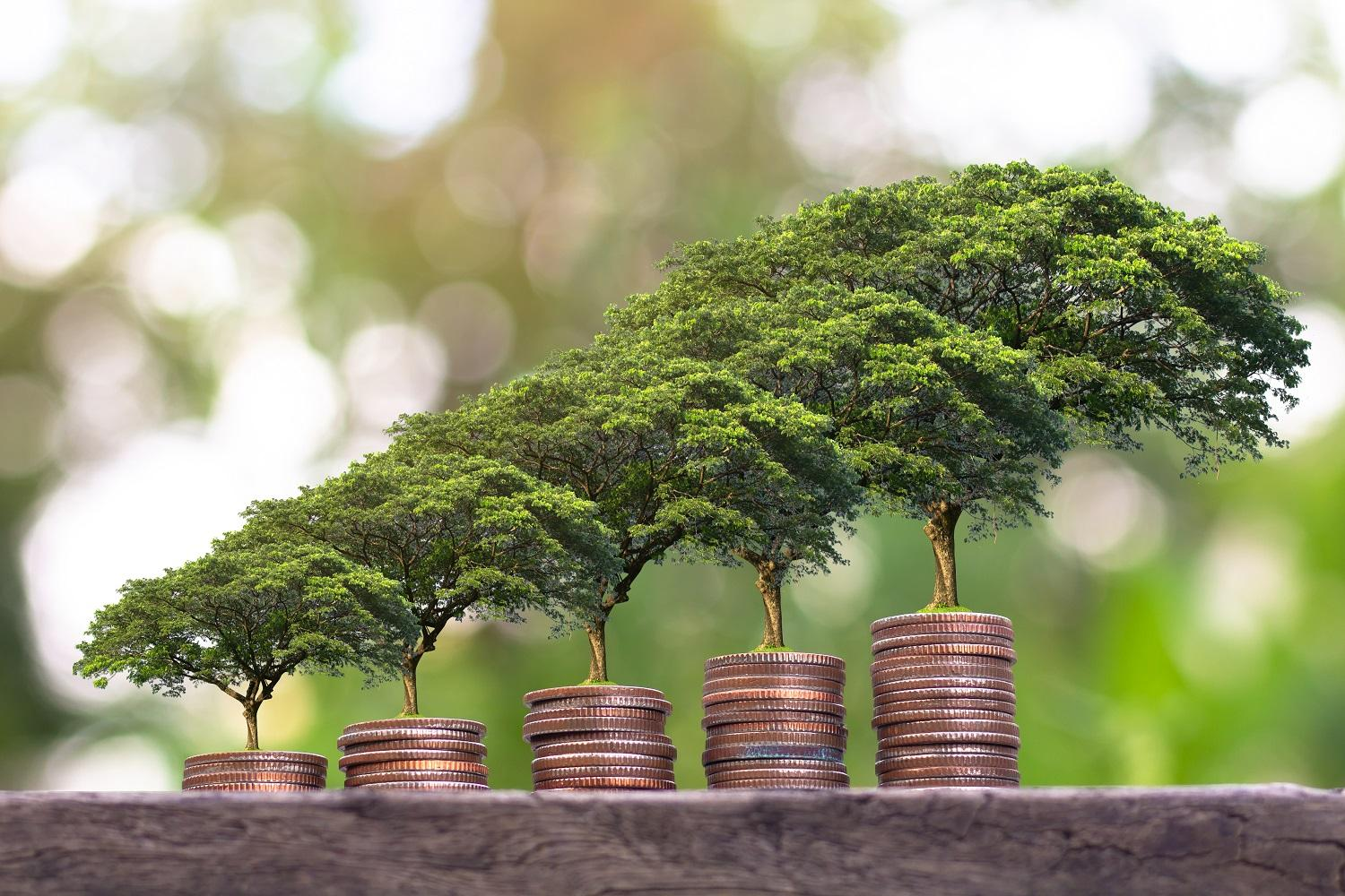 sustainable_financing